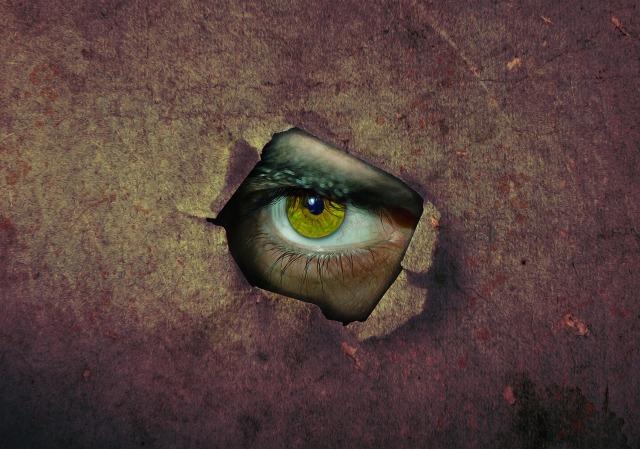 eye-3383682_1920