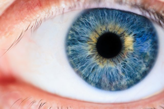blue-eyes-close-up-eyeball-1486641.jpg