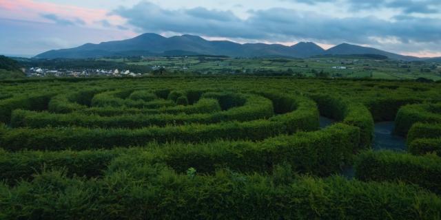 castlewellan-castlewellan-maze-field-1650921.jpg